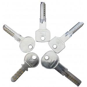 Pack de 5 bumpkeys pour serrures radiales