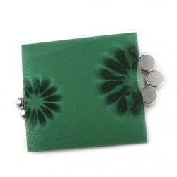 papier magnétique révélateur de polarité.