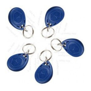 Lot de 5 Badges RFID 125 kHz Porte-clés